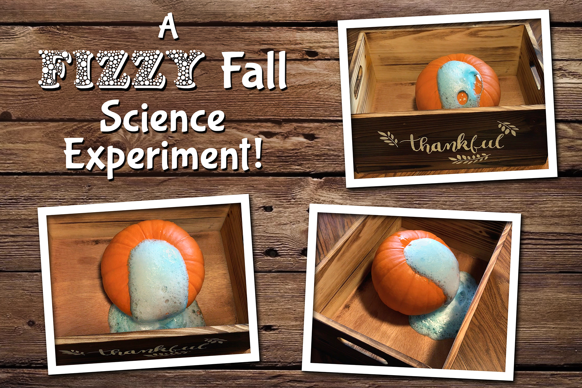Pumpkin Volcano Science Activity